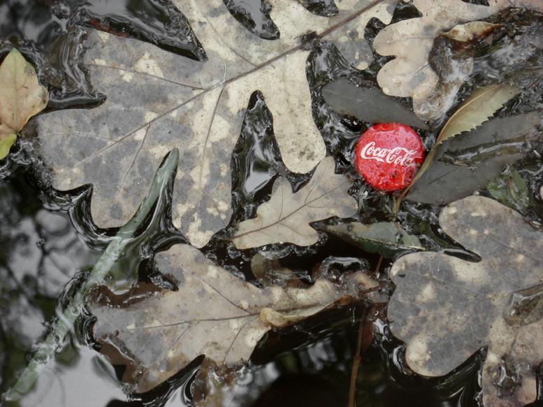 coca-cola-hearts-nature-sml.jpg