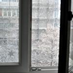 7 ninge