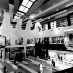 Max Streicher Lumi Plutitoare Expozitie Bucuresti